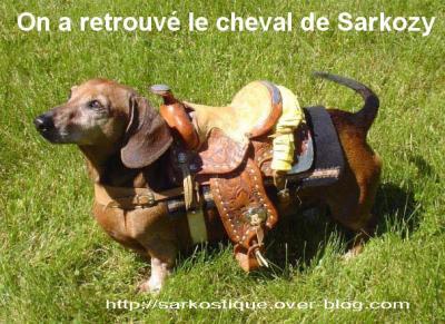 quelques unes en images - Page 17 Le-cheval-de-sarkozy